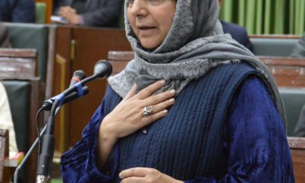 Mehbooba Mufti chairs all-party meet on panchayat polls, majority seeks deferment