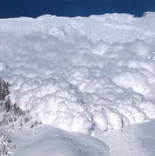 No avalanche warning issued: 11 lives could have been saved