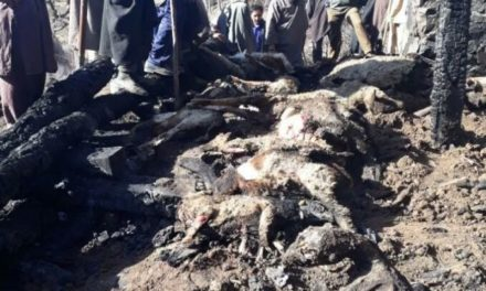 55 sheep, goats charred alive in fire at Lolab
