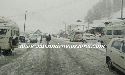 Fresh snowfall In Sonamarg,traffic Suspended on Srinagar Leh highway
