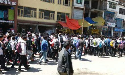 Kangan Students hold Peaceful Protest rally against Brutal Rape And Murder of Asifa