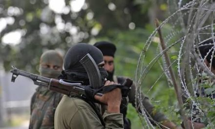 28 youth join militant ranks this month in South Kashmir