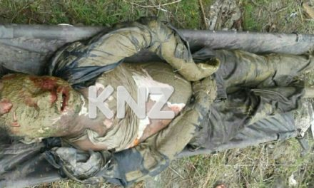 Semi-Decomposed Dead Body Recovered In Ganderbal,Police seek help to identify