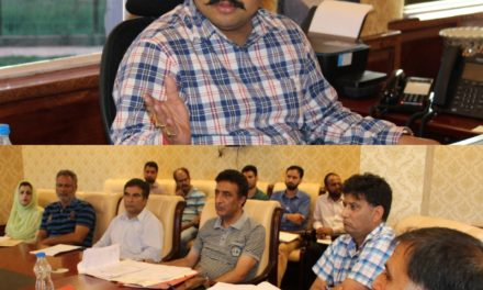 DDC Ganderbal reviews progress of ongoing road projects