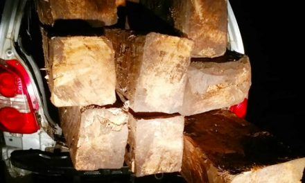 Police seized timber logs In Car worth lakhs of rupees in Ganderbal
