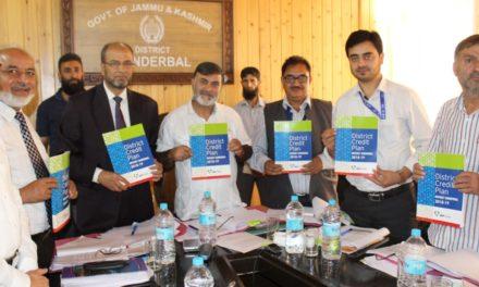 DLRC Meeting held in Ganderbal Banks extend Rs 95.84 Crores for the Quarter June 2018 in Ganderbal