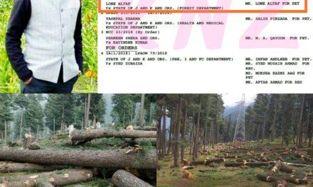 Advocate Lone Altaf files PIL against deforestation in sind Forest division