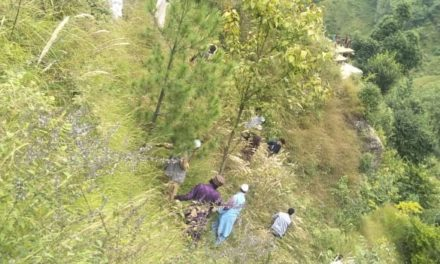 Four passengers killed, seven others injured as Sumo plunges into gorge in Doda