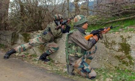 Forces sealed Shopian village, searches underway
