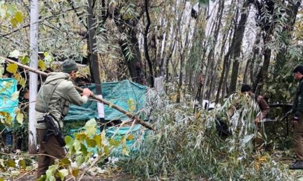 Joint team of Police, SDRF, PDD carry snow clearance work in Harwan.