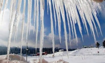 Srinagar records season's coldest night