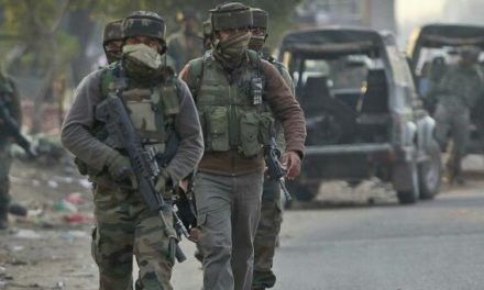 Kulgam Gunfight: No militant body found yet, Searches on