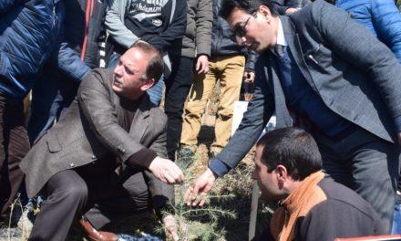 DLSA launches massive plantation drive in Bandipora; aims to plant 1.32 lakh saplings
