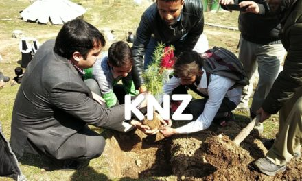Sind Forest Division Ganderbal In collaboration with Media fraternity holds plantation drive at Gutlibagh Preng