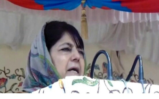 By Joining Hands With BJP, Mufti Had Captured 'Ghost In Bottle': Mehbooba