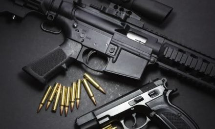 Deposit guns at police stations before March 15, SSP Ganderbal to people