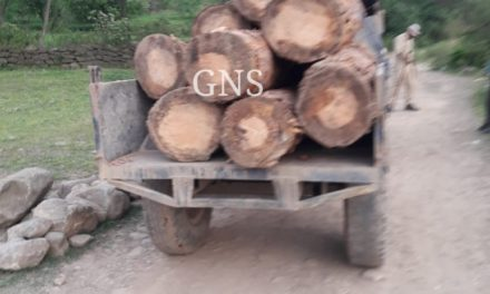Tractor loaded with illicit timber logs seized in Poonch