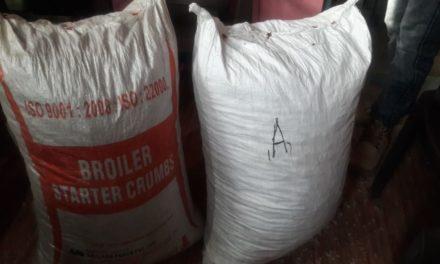 Drug peddler arrested in Anantnag