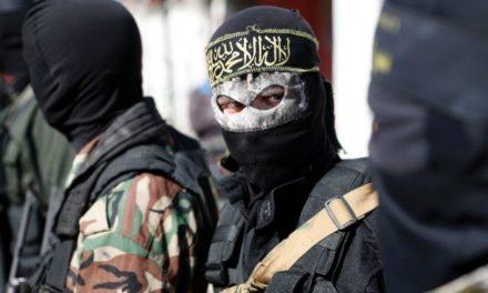 19 Local Militants Active In North Kashmir: DIG