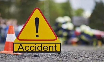 11 persons returning from Baba Nagri Shrine injured in Road Mishap.