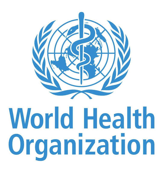 Lockdowns not enough to defeat COVID-19: World Health Organization
