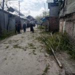 Covid-19: preventive measures Baharabad Hajin  village starts axing of female Russian poplar trees